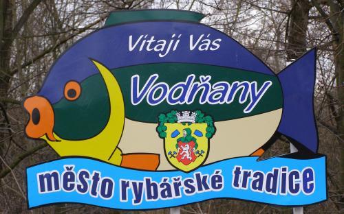 vodnany-_mesto_ryb_a_rybniku.jpg
