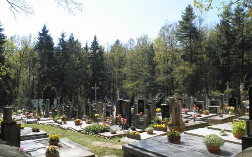 mariansky_lesni_hrbitov_na_lomci.jpg