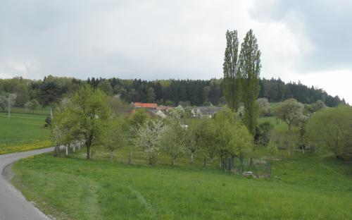 vodnanske_svobodne_hory.jpg