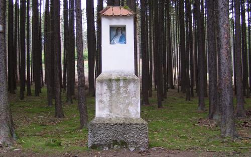 u_modreho_obrazku_v_zadusnim_lese.jpg