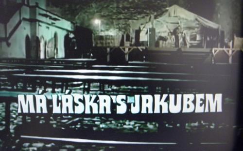 ma_laska_s_jakubem_uvod_na_nadvori_straknickeho_hradu.jpg