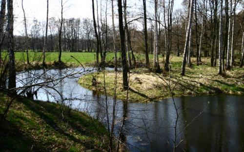 obnovene_laguny_pod_zahorskym_rybnikem.jpg