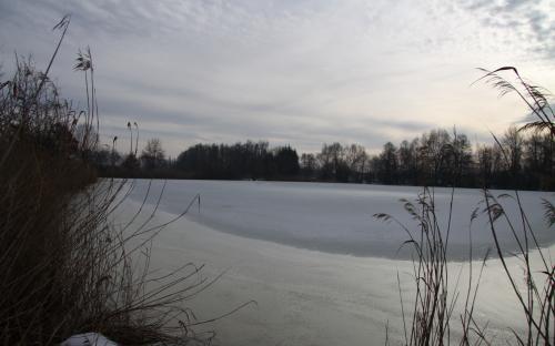 maly_ustavni_rybnik_v_zime.jpg