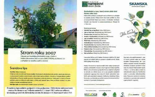 strom_roku_2007.jpg